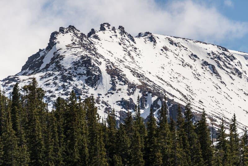 Mountain landscape mt evans colorado royalty free stock images
