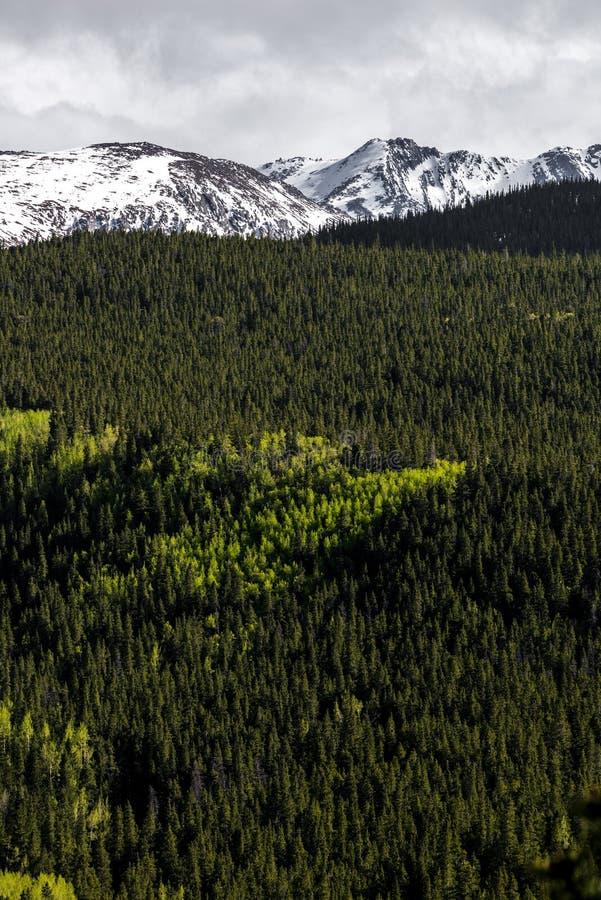 Mountain landscape mt evans colorado stock images