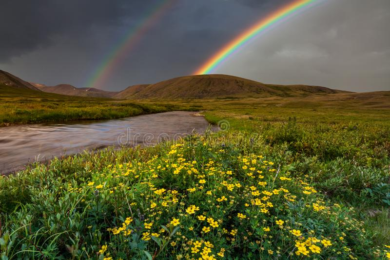 Mountain landscape with a rainbow over flowers royalty free stock photo