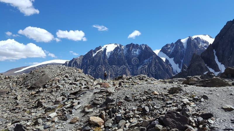 Mountain landscape. Summer altai glacier ice stock images
