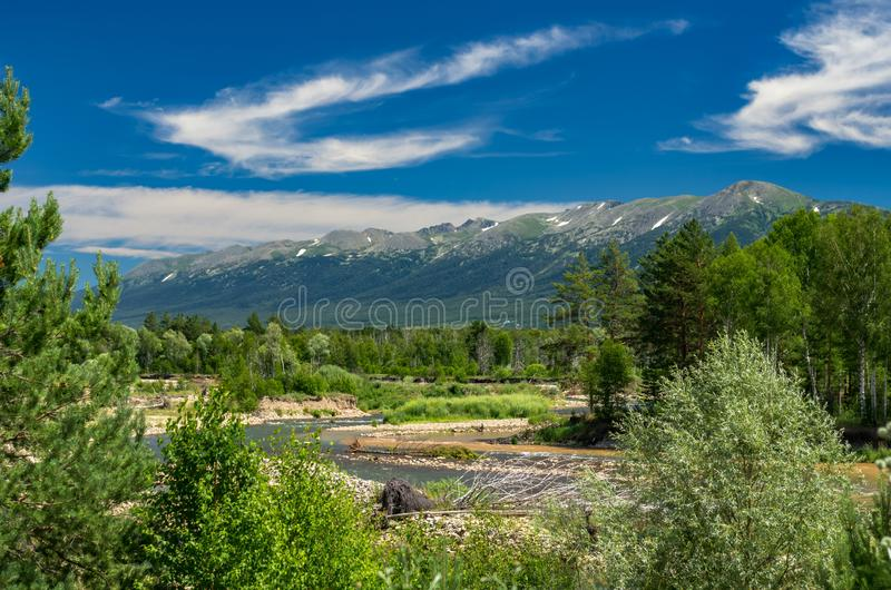 Mountain Landscape On A Sunny Summer Day. Blue Sky, White Clouds, River Splashing, Flowing Over Rocks, Evergreens And Trees royalty free stock photos
