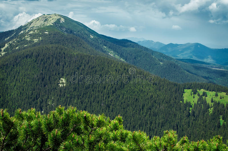 Mountain landscape. Ukrainian Carpathians, views of Mount Bruise royalty free stock photos