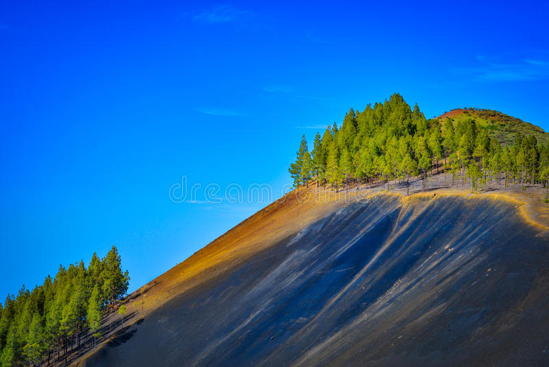 Mountain landscape with volcanic soil and pine trees in Gran Canaria island, Spain royalty free stock image