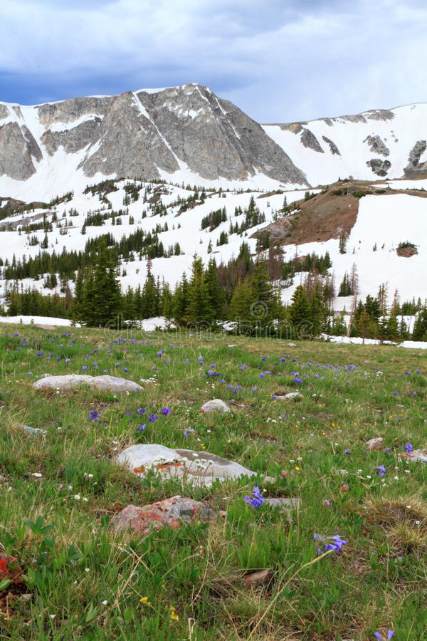 Download Mountain Landscape Of Wyoming Stock Image - Image: 21150713