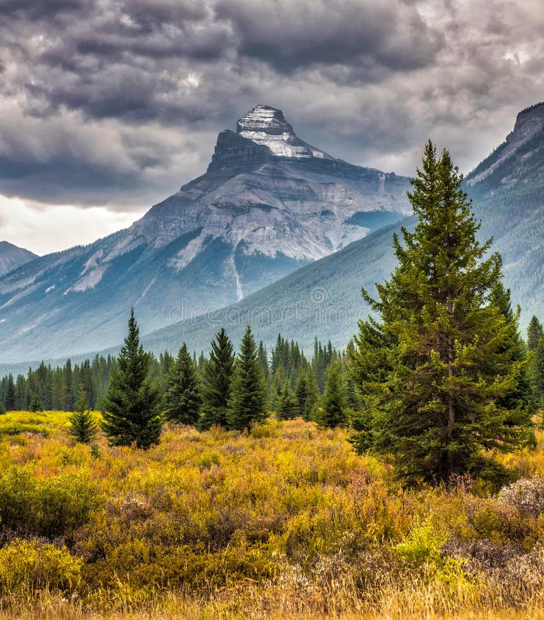 Mountain landscape, Canadian Rockies royalty free stock images