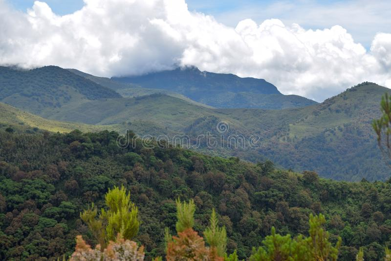 The mountain landscapes of Mutarakwa Forest, Kenya. The mountain landscapes Mutarakwa Forest in Aberdare Ranges, Kenya stock photos