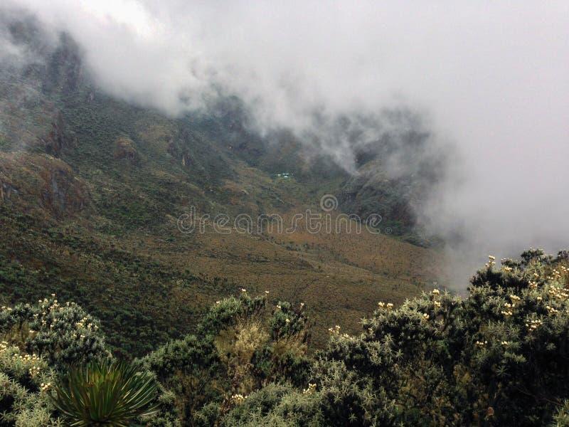 Mountain landscapes in the Rwenzori Mountains. The foggy landscapes in the bujuku valley in the rwenzori mountain range, uganda, trek, nature, outdoors, hike stock photography