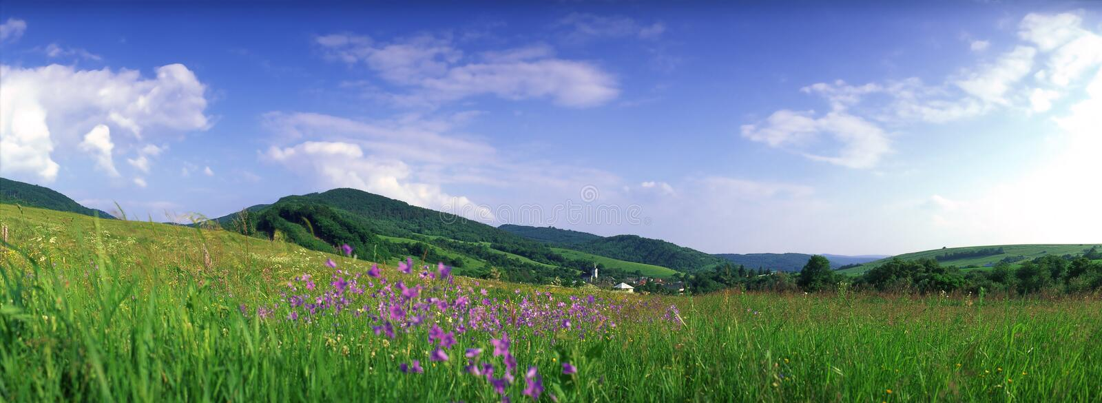 Mountain meadow panorama. Mountain meadow in spring, Lower Beskids, Central Carpathians, Slovakia royalty free stock photos