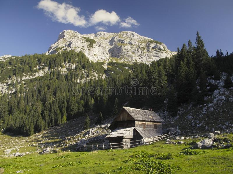 Mountain meadow Planina V Lazu in Julian Alps royalty free stock photos