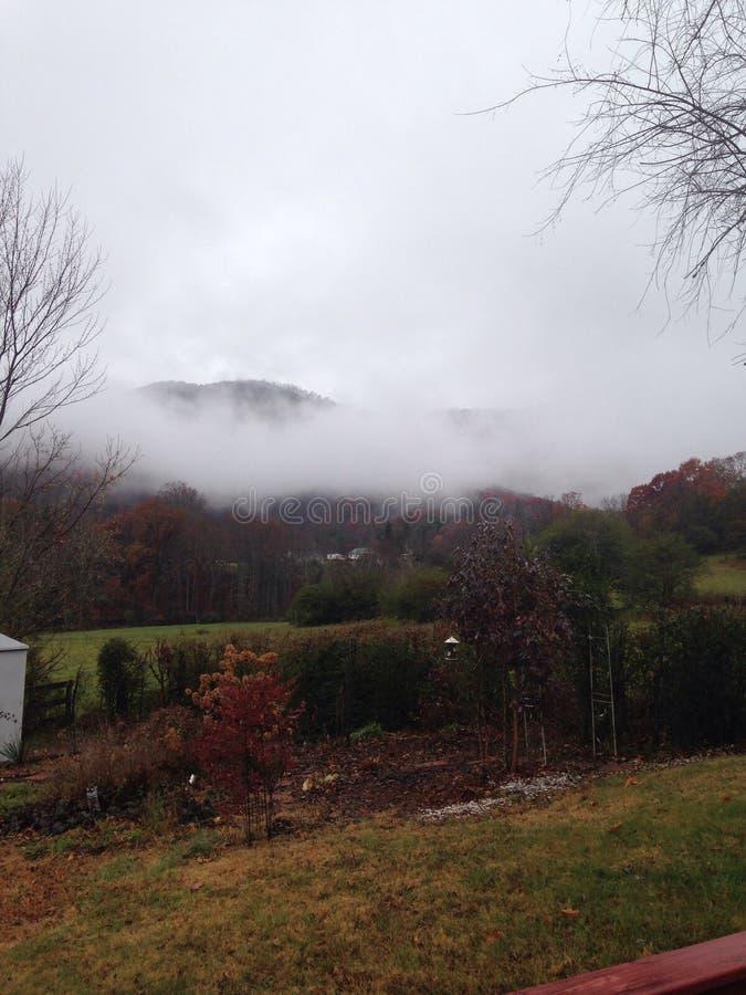 Mountain Mist stock photo