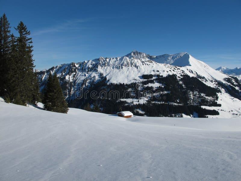 Mountain Named Lauenenhorn