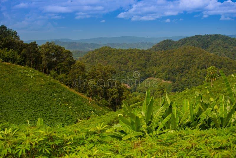 Mountain1 stock photo