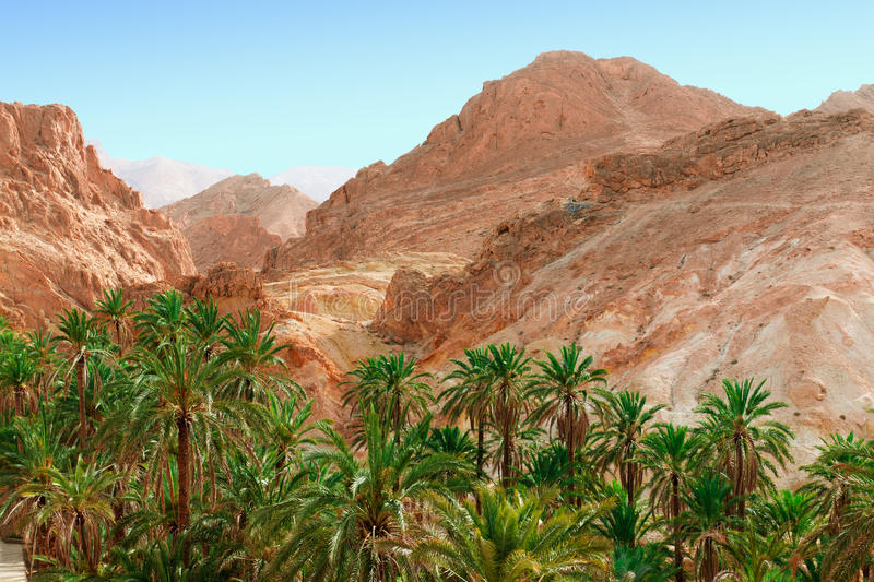 Mountain oasis Chebika. Chebika (Tozeur Governorate) is a mountain oasis in western Tunisia, in Tozeur Governorate stock photography