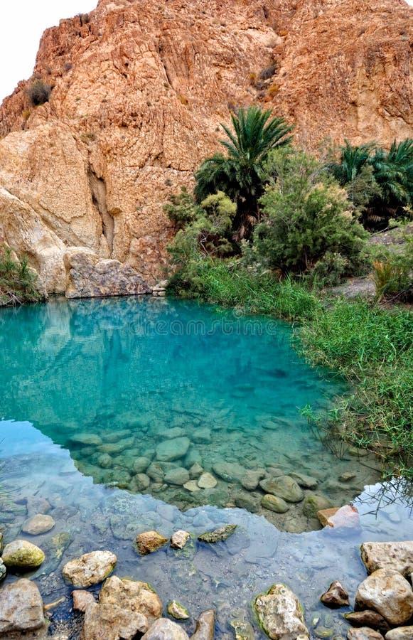 Mountain oasis Chebika. At border of Sahara, Tunisia, Africa royalty free stock photo