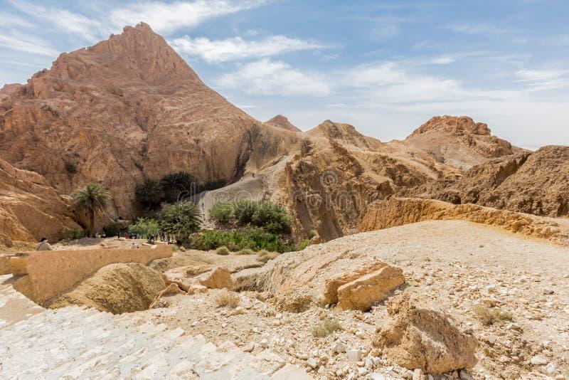 Mountain oasis Chebika in Sahara desert, Tunisia