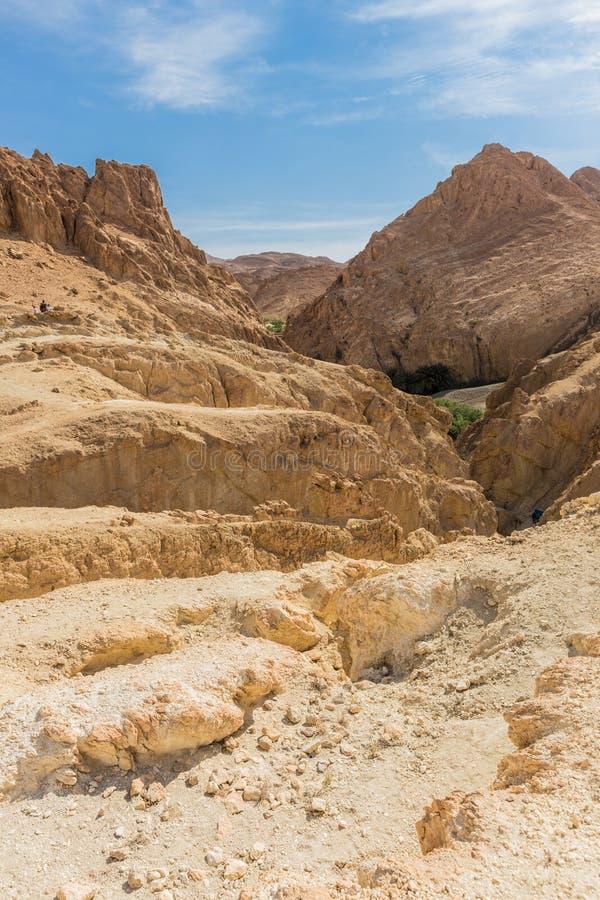 Download Mountain Oasis Chebika In Sahara Desert, Tunisia Stock Photo - Image: 32288250