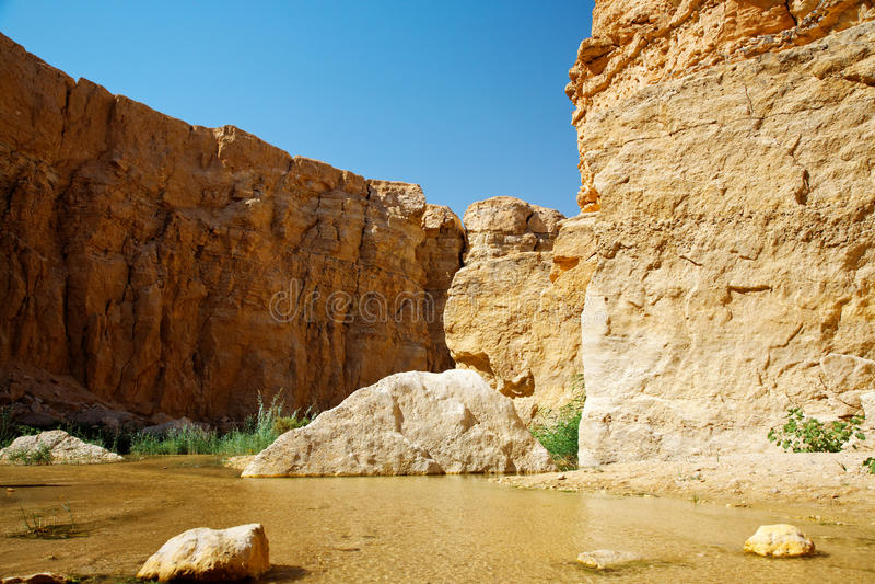 Mountain oasis Tamerza. Mountain oasis Tamerza in Tunisia near the border with Algeria stock images
