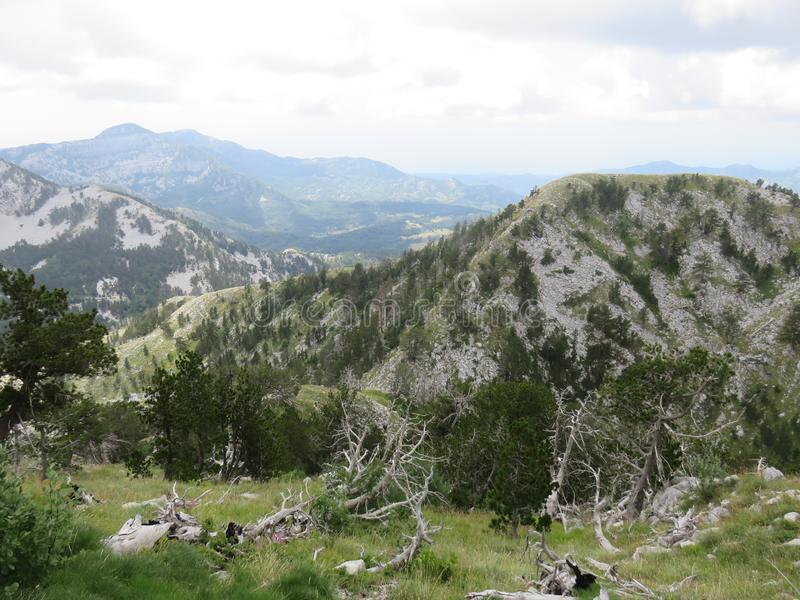 Mountain Orjen Montenegro rocky landscape green valley. Seen from the hiking trail in summer 2019 royalty free stock photo