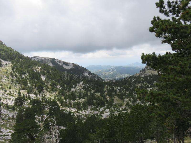 Mountain Orjen Montenegro rocky landscape green valley. Seen from the hiking trail in summer 2019 stock photos