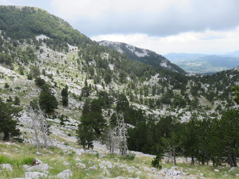 Mountain Orjen Montenegro rocky landscape green valley. Seen from the hiking trail in summer 2019 royalty free stock image