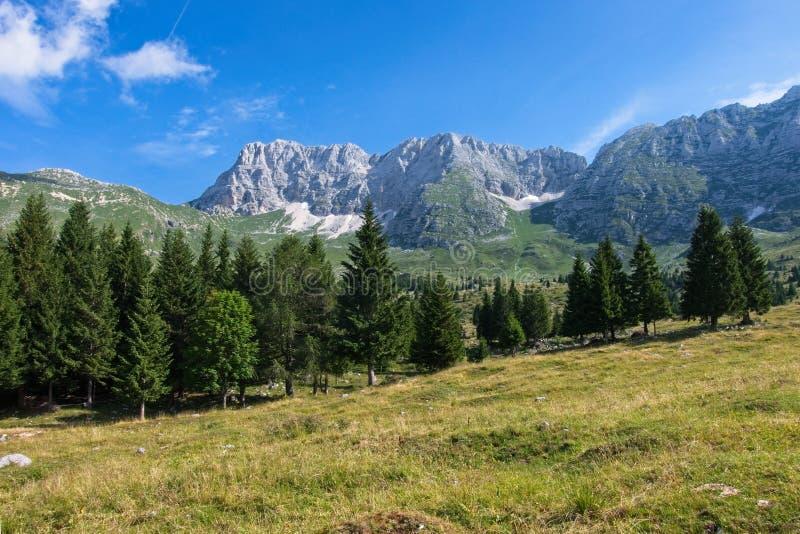 Mountain panorama of the Montasio plateau, Italy. Mountain panorama of the Montasio plateau, Italy royalty free stock image
