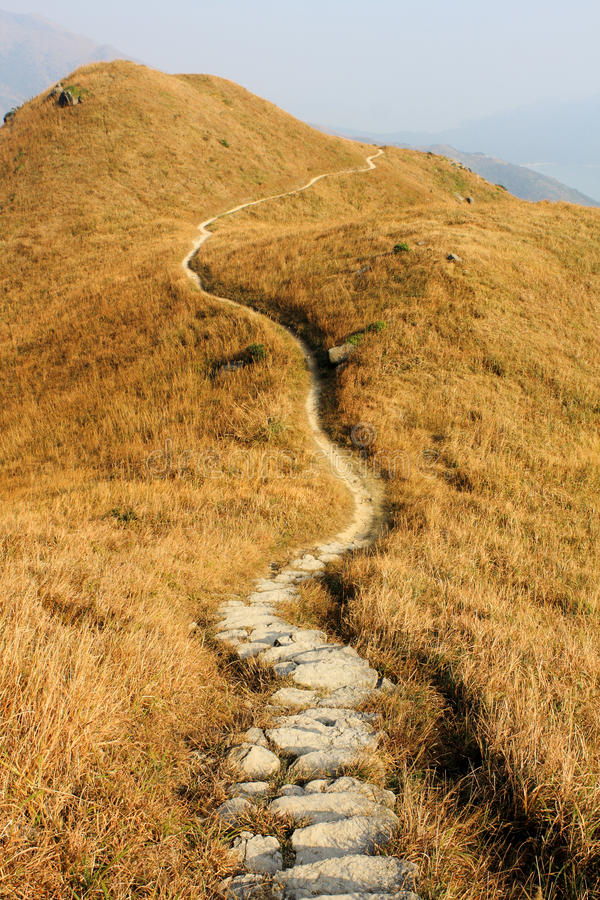 Mountain path. And yellow grass stock images
