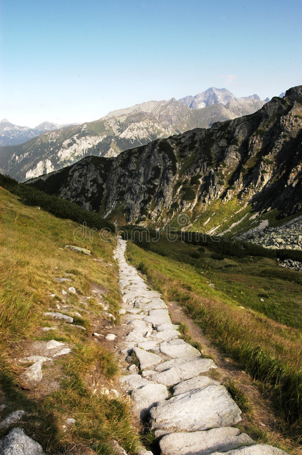 Download Mountain path stock photo. Image of grass, pathway, trail - 2264190