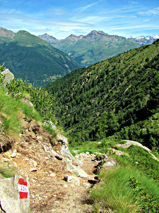 Mountain Path View. Hiking Trail. Italian Alps. Walking on a mountain pebble strewn path, looking off in the distance where there are coniferous forests and stock photos