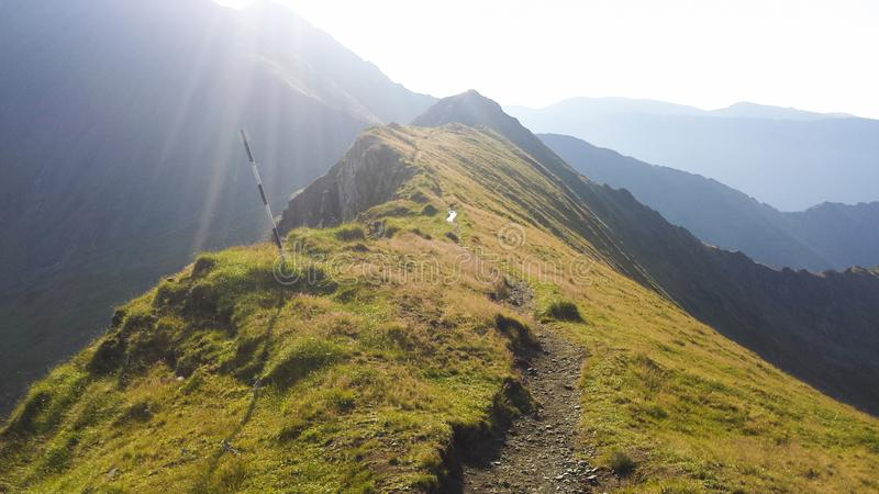 Mountain path and marking pole that leads to Bucsoiu peak. From Carpati mountains in Romania royalty free stock images