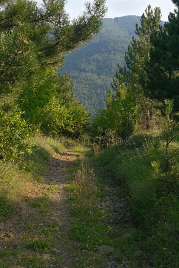 Mountain path in clear day stock photography
