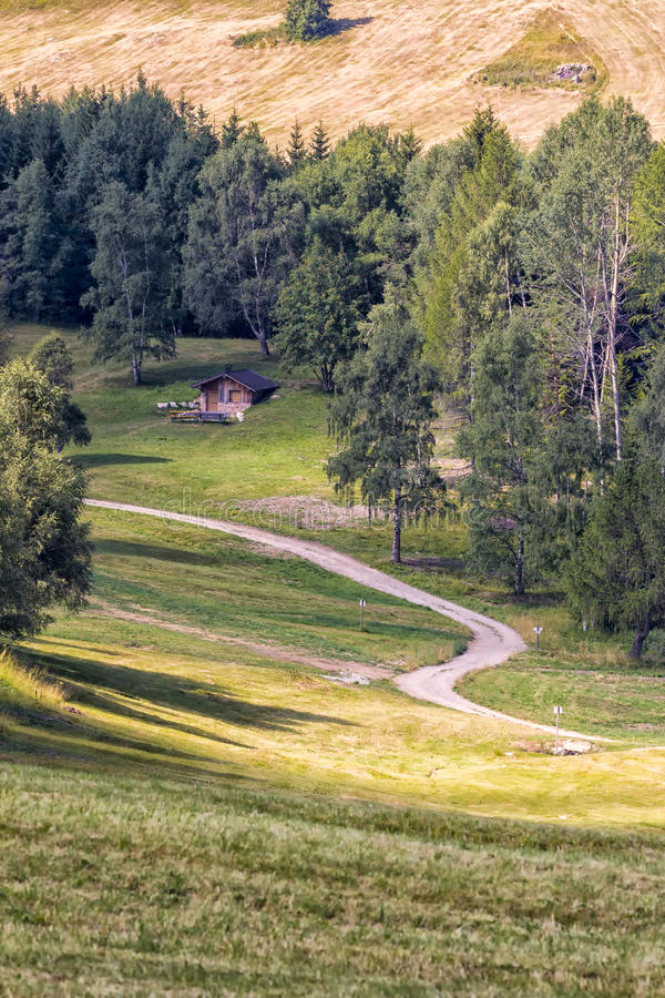Download Mountain Pathway. Italy stock image. Image of grow, natural - 33668835