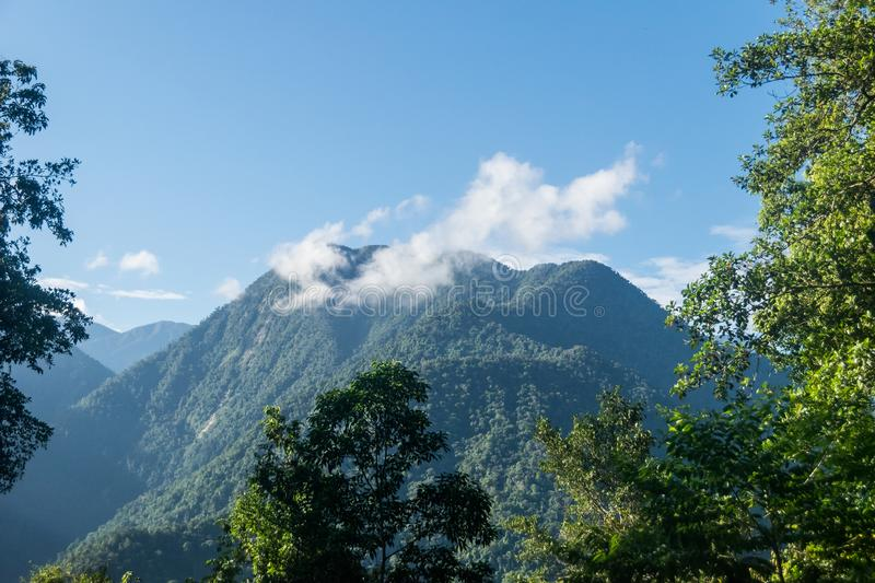 Mountain peak at the Sierra Nevada of Santa Marta in Colombia. Mountain peak covered by white clouds at the Sierra Nevada of Santa Marta in Colombia royalty free stock image