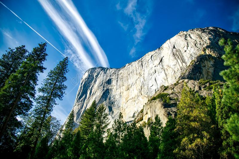 Mountain Peak Surrounded By Forest royalty free stock photography