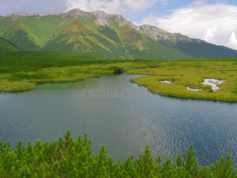 Download Mountain Pond In Slovak High Tatras Stock Photo - Image of scenery, lake: 1245040