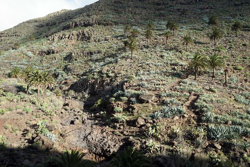 Mountain range. On the La Gomera island, Spain stock image
