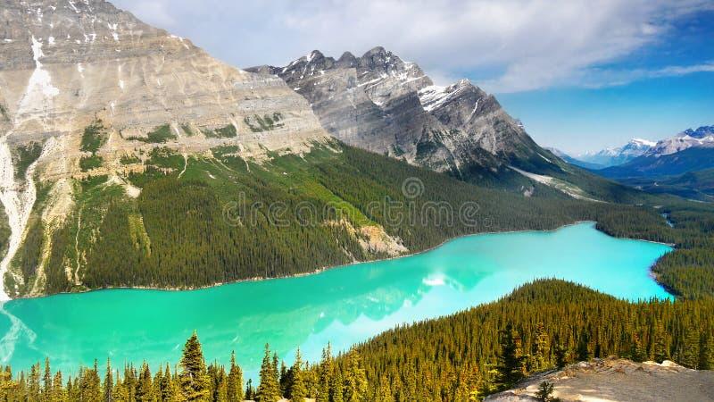 Canada, Banff National Park, Peyto Lake Mountains Panorama royalty free stock image
