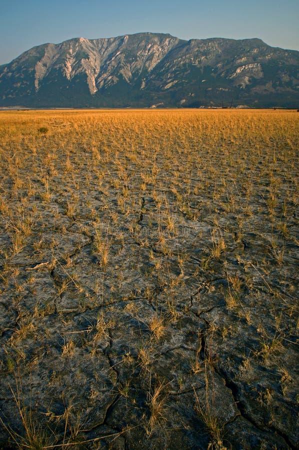 Free Mountain Range With Yellow Field Stock Photo - 12493430