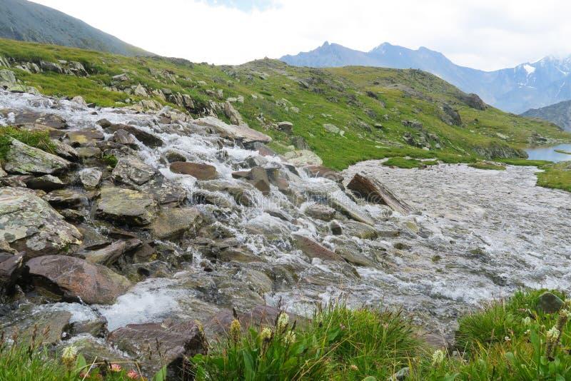 Mountain rapid river. Valley of 7 lakes. Altai Mountains, Russia. Mountain rapid river. Valley of 7 lakes. Altai Mountains stock photos