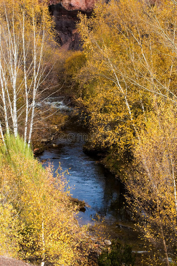 Download Mountain river stock image. Image of nature, seasonal - 22857237