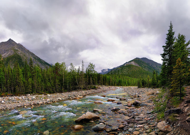 Mountain River. Landscape with a mountain stream. Shumak river. Tunka ridge. Eastern Sayan. Republic of Buryatia stock photography