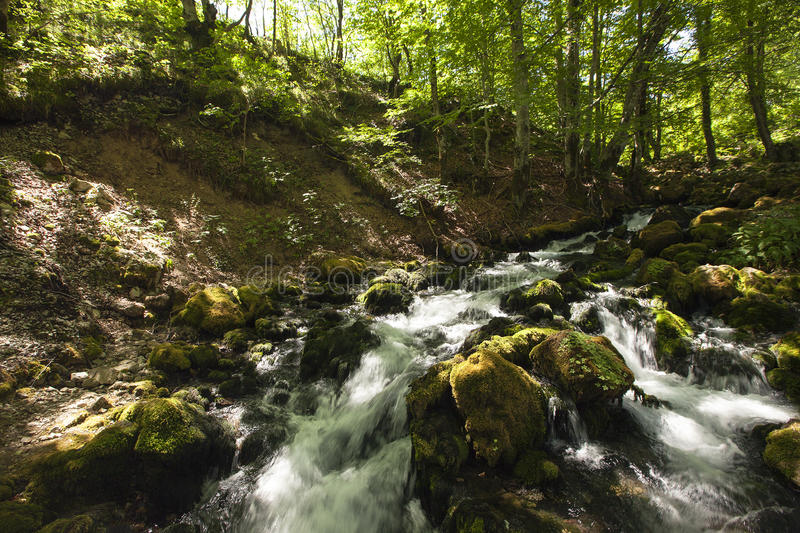 Download The mountain river stock image. Image of rapid, flowing - 27810187