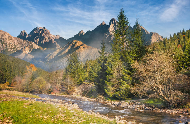Mountain river in autumn forest stock images