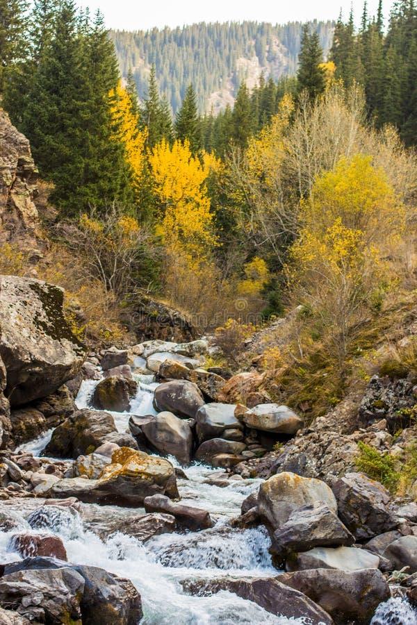 The mountain river in the autumn. Rough river in the mountains of Almaty, Kazakhstan stock photos