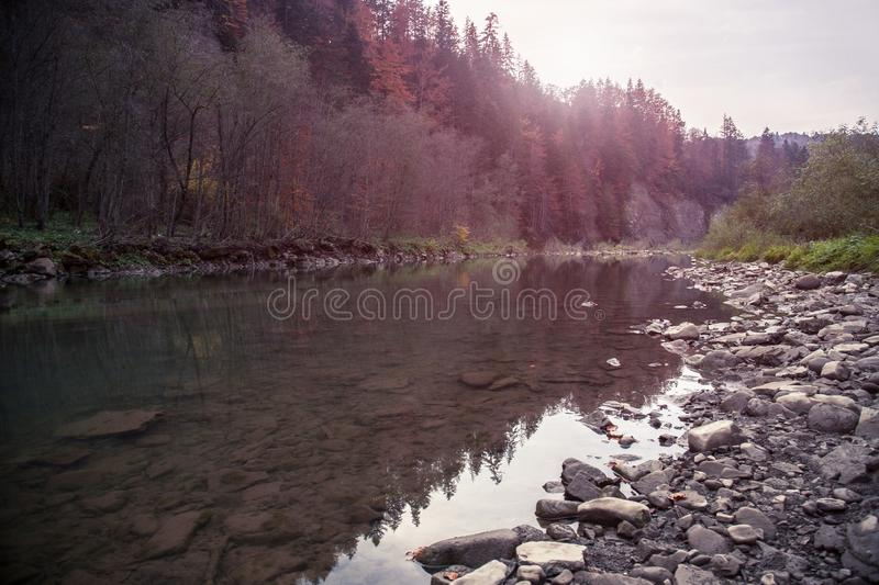 Mountain river in autumn time. Rocky shore. Colorful forest stock photos