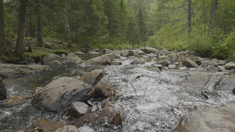 Mountain river in autumn time. Rocky shore. River flowing through Rocky Mountains stock image