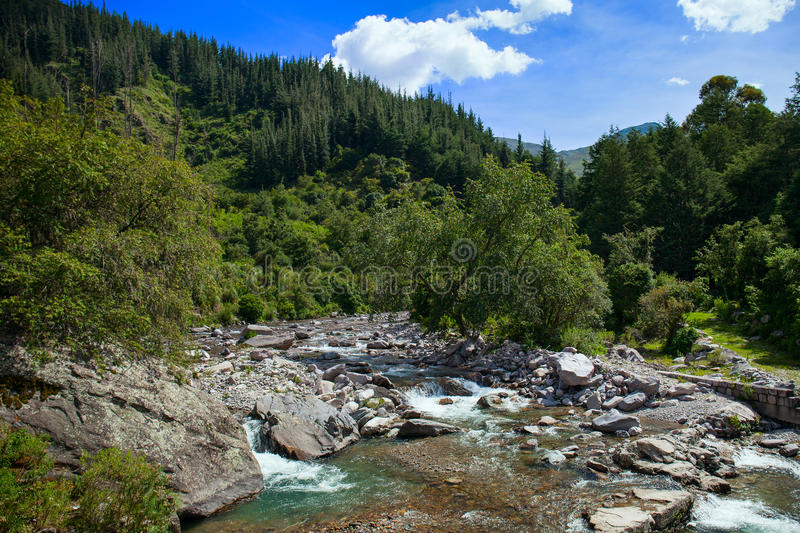Mountain river of Bolivia. Clear mountain river surrounded by a forest in southern Bolivia stock image
