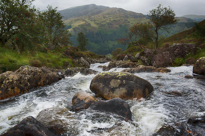 Mountain River royalty free stock images