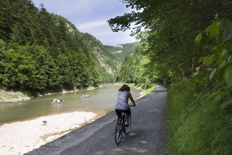 Mountain river. Dunajec River in Pieniny Mountains, at the Polish-Slovakian border royalty free stock images