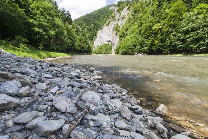 Mountain river. Dunajec River in Pieniny Mountains, at the Polish-Slovakian border royalty free stock photo