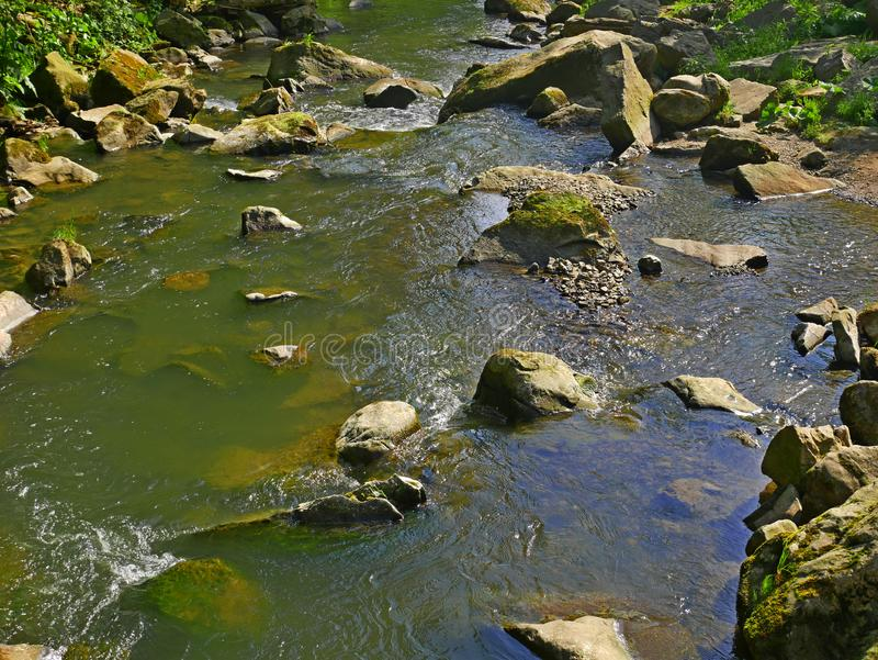 Mountain river with fast stream and big boulders. Carpatians in Western Ukraine, fine summer day stock image